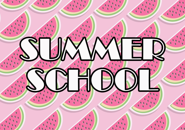 Summer School at Wellfield